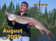 Tim Schultz with the biggest pike of his life. 90 percent of the big pike caught in august are 10-12 feet of water.